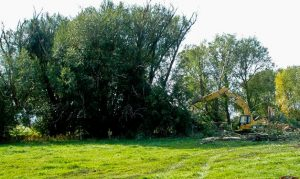 Land Clearing Excavating Contractors