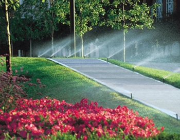 Commercial Irrigation System Repair -Sprinkler-Repair-Palm City-Sutart-Hobe Sound-Port St Lucie-Jensen Beach-St Lucie West-Fort Pierce-Vero Beach